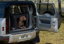 Land Rover Yogi 3d patousa