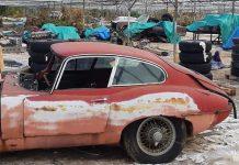 Jaguar θερμοκήπιο