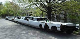 Cadillac Guinness