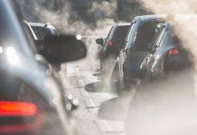 Μετακινήσεις και ρύποι, έκθεση TERM 2020